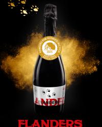 Złoty medal na KPR 2019 dla naszego Flandersa!